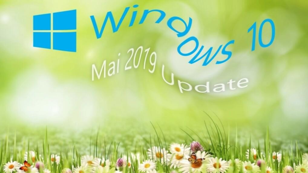 Schwarzer Bildschirm nach Windows-Update: