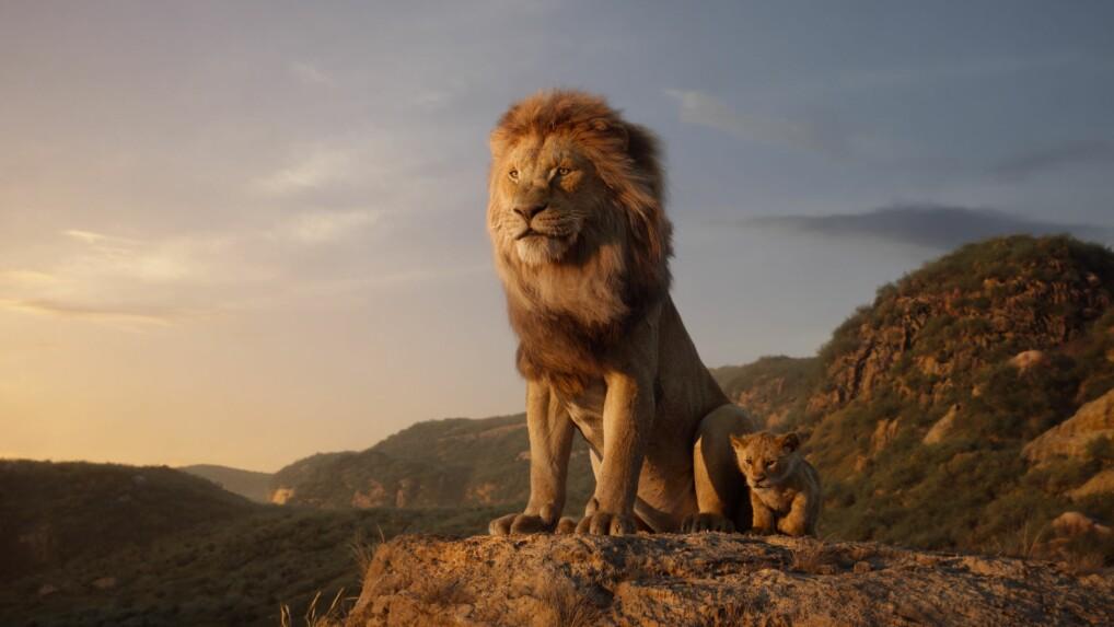 König Der Löwen Realverfilmung