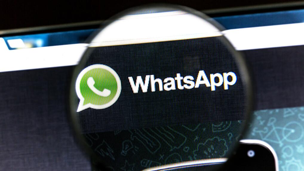 Whatsapp So Funktioniert Die Weiterleitung Von Nachrichten