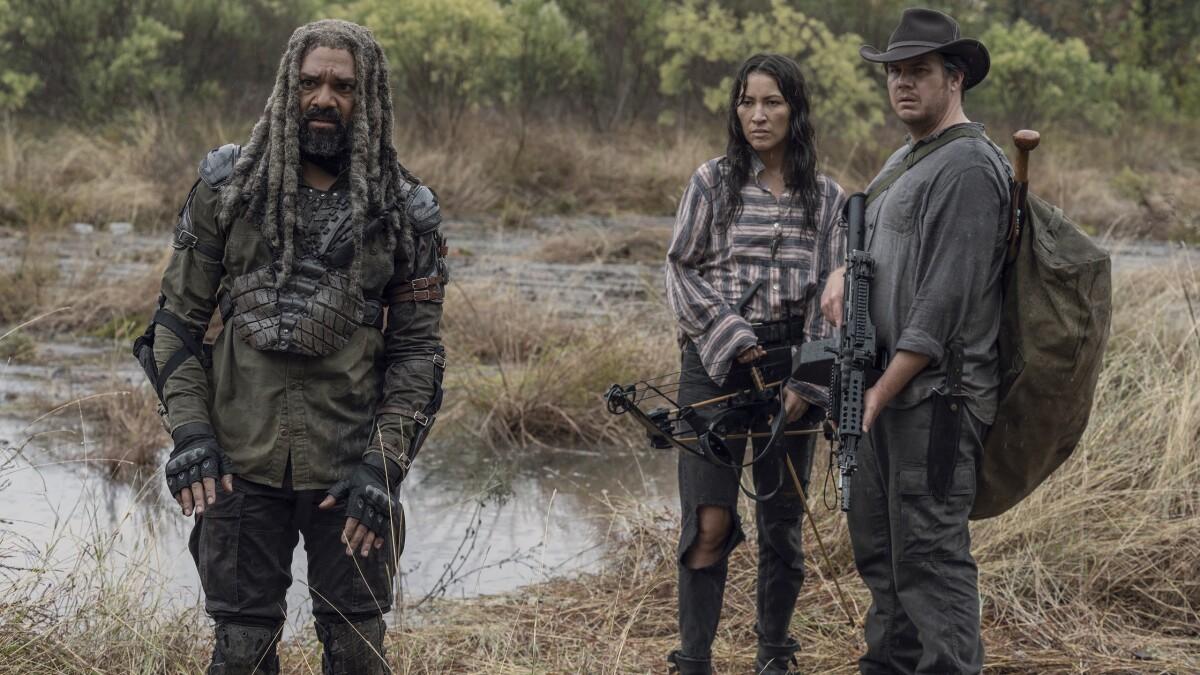 Walking Dead Alle Staffeln