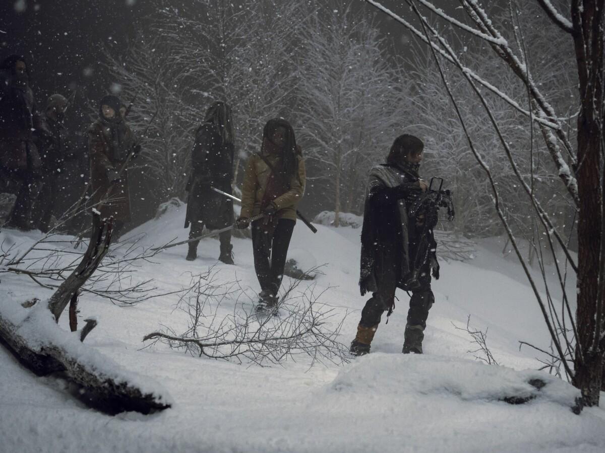 The Walking Dead Staffel 1-4