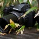 All-Inclusive: Bridgekameras sind so groß und schwer wie DSLR- oder Systemkameras und sind mit großen Zoomobjektiven ausgestettet. Bei einer Bridgekamera kann das Objektiv nicht abgenommen werden.