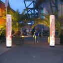 Hübsche Kulisse mit Palmen auf dem Weg zum Eingang