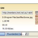 Wenn Sie die Maus über einen Download bewegen, erfalten Sie Zusatzinformationen und bei Bildern sogar eine Vorschau.