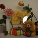 Zimmerbeleuchtung ein, Blitz aus: ISO 800, Blende 3.5, 1/160 Sekunde.