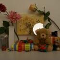 Zimmerbeleuchtung ein, Blitz aus: ISO 100, Blende 3.6, 1/20 Sekunde.