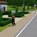 Joggen dient der Gesundheit des Sims.
