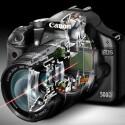 Ein Blick in das innere der Kamera. Der rote Strahl demonstriert den Lichteinfall durch das Objektiv auf den Bildsensor.