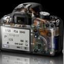 Bei diesem Blick ins Innenleben der Kamera ist unter anderem die Position der SD(HC)-Speicherkarte zu erkennen.