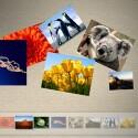Mit Surface Collage kann der Anwender seine Fotosammlung sortieren, die Bilder vergrößern oder verkleinern und eine Collage daraus bauen.