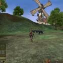 """Das Spiel  bietet ein unterhaltsames """"Pet-System"""" implementiert, welches dem Spieler erlaubt, seinem Charakter ein Haustier zur Seite zu stellen."""