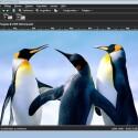 Im Komplett-Editor stehen dann wirklich alle Funktionen des Programms zur Verfügung. (Bild: Netzwelt)