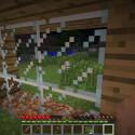... verbauen die Fenster. Selbst eine schicke Glasfront ist drin! (Bild: netzwelt)