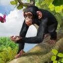 Zoo Tycoon erscheint auch für die Xbox 360. (Bild: Microsoft)