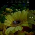 Auf dem Smartphone-Display sieht der Nutzer live, wie sich eine Veränderung der Einstellungen auf das Foto auswirkt. (Bild: Screenshot Nokia Webcast)