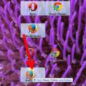 """Ziehen Sie mit gedrückter linker Maustaste die Dateien, Verknüpfungen und Programme in den neu angelegten Ordner, die zu dem entsprechenden Überbegriff passen. In unserem Beispiel haben wir den Ordner """"Browser"""" genannt und verschieben nun Opera, Firefox und Google Chrome in den Ordner. (Bild: Screenshot)"""