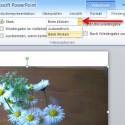 """Mit der Option """"Start"""" legen Sie fest, ob Ihr Video mit Aufruf der Folie automatisch oder per Mausklick starten soll. Klicken Sie dazu auf das kleine Dreieck. In der sich aufklappenden Auswahl markieren Sie Ihre gewünschte Option. (Bild: Screenshot/Microsoft PowerPoint 2010)"""