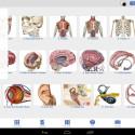 """Mit dem """"Human Anatomy Atlas"""" erforschst du deinen Körper und siehst dir einzelne Körperteile in 3D-Ansichten an. 22,73 Euro gespart."""