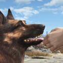 Call of Duty-Dog?