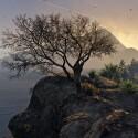Rockstar entschuldigt sich für die Verschiebung der PC-Version. (Bild: Rockstar Games)