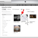 """Bewege die Maus über das Album, welches du ausblenden möchtest und klicke dann auf das """"X"""" in der oberen linken Ecke."""