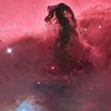 """Bill Snyder ist Gewinner der Kategorie """"Deep Space"""": Horsehead Nebula (IC 434). (Bild: Bill Snyder)"""