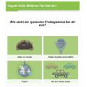 Was für ein Tier bist du? Der Google Doodle zum Earth Day ist ein Quiz mit fünf Fragen.