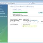 Der Download des Vista SP2 benötigt etwa 260 Megabyte Speicherplatz.