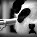 Besonders abgedreht ist <b>Black</b> - im Bild ein Russisch-Roulette-spielender Pandabär. (<a href=http://video.google.de/videoplay?docid=1037296388701256716 target=blank>Ansehen</a>)