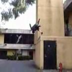 Auch in den USA gibt es Menschen mit dem Hang zum Risiko: Die <a href=http://www.emcmonkeys.com target=blank>E.M.C. Monkeys</a> springen aber nicht nur von Dächern, sondern sind auch Könner auf dem Gebiet der Martial-Arts-Tricks. Ein <a href=http://www.youtube.com/watch?v=D2kJZOfq7zk&feature=Favorites&page=1&t=t&f=b target=blank>Sampler-Video auf YouTube</a> zeigt eindrucksvoll ihr Können.
