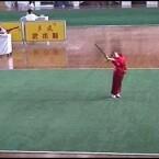 Ein Ursprung der Martial-Arts-Tricks sind die chinesischen Wushu-Kampfkünste. Dazu gehört sowohl der unbewaffnete Kampf als auch Techniken mit Waffen wie dem Schwert, dem Speer oder dem Stab. Auf den Seiten der Kampfschule Wushu Central finden sich hunderte <a href=http://www.wushucentral.com/videos/ target=blank>Clips von Wushu-Vorführungen aus den USA und China</a>.