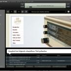 Noch am Anfang der Entwicklung steht Songbird. Das Open-Source-Programm ist daher noch voller Bugs. Dennoch ist Songbird vielversprechend: Per Webbrowser kann man Webseiten besuchen und mit nur einem Mausklick sämtliche Audiodateien herunterladen und zur Bibliothek hinzufügen; gerade bei Musiklabels können Internetnutzer so schnell, kostenlos und legal ihre Musiksammlung aufstocken.