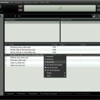 Die Informationen zu den einzelnen Songs lassen sich bearbeiten.