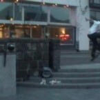 Statt Krafttraining hätte der Junge vielleicht mal das Skateboardfahren ausprobieren sollen. Ist doch viel cooler; viel gefährlicher leider auch. (<a href=http://www.youtube.com/w/Skating-Mishaps?v=3KKHK1J8Fgo&search=Mishap target=_blank>Clip ansehen: Flash</a>)