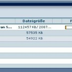 Kernstück des Programmes ist die P2P-Komponente: Statt von Download-Servern können Nutzer Daten auch untereinander tauschen. Uploader belohnt Medionbox mit Gutschriften auf das Kundenkonto. Im Test saugten wir allerdings nur von den als Peers fungierenden Servern des Unternehmens.