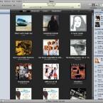 Genius präsentiert jede Menge Tracks zum aktuellen Titel aus dem iTunes-Store.