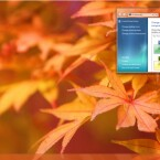 Bunte Ahorn-Blätter aus Japan. Quelle: Lifehacker