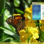 Ein Schmetterling auf Sommerblumen. Quelle: Lifehacker