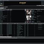 In der Medienbibliothek von Winamp können in verschiedenen Bereichen Interpret, Album und Titel ausgewählt werden.