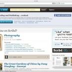 Scribd ist in den USA sehr beliebt, wenn es um die Bereitstellung von Dokumenten im Web geht. (Bild: Netzwelt)