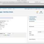 Für die Eingabe eines neuen Artikels gibt es einen WYSIWYG-Editor und die Option, die Meta-Daten zu ändern. (Bild: Netzwelt)