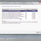 Hat der Nutzer keine gültige Lizenznummer angegeben, kann er die Server-Variante selbst auswählen. (Bild: Netzwelt)