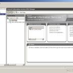 Nach erfolgreicher Installation sollte der IIS im Server Manager mit einer Standard-Site erscheinen. (Bild: Netzwelt)