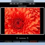 In PaintShop Photo Express erreicht der Nutzer mit der Schnellkorrektur sehr gute Ergebnisse. (Bild: Netzwelt)