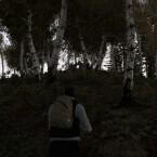 """Durch den Wald schleichen in der Mod DayZ. (Bild: Dean """"Rocket"""" Hall)"""