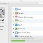 ... Mountain Lion. Das Häkchen vor Safari im neuen OS sorgt etwa für die Synchronisation von Browser-Tabs  - eine auf dem iPad begonnene Surfsitzung lässt sich damit auf dem Mac an der gleichen Stelle fortsetzen. (Bild: Screenshot)