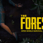 The Forest - 10,04 Euro (Quelle: Endnight Games)