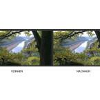 Nach der Bearbeitung mit dem Texturverbesserer bekommt das Bild mehr Kontrast und die ursprünglich verwaschenen Blätter im Vordergrund werden scharf.