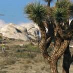 Die Umgebungen und Landschaften profitieren...