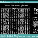 Der Brain-Virus hat an sich nicht viel Schaden angerichtet, gilt aber als Vorreiter aller IBM-kompatiblen PC-Viren. Ein pakistanischer Teenager entwickelte den Boot-Sektor-Virus, welcher als Vorbild für Millionen folgender Viren diente.